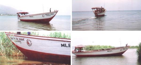 mleciboat